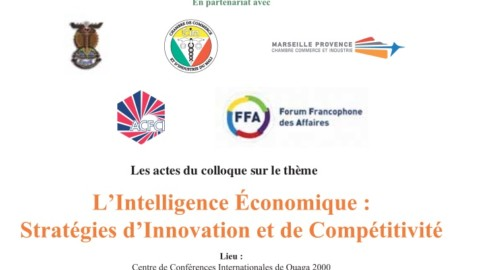 L'Intelligence Economique Strategies d'Innovation et de Competitive